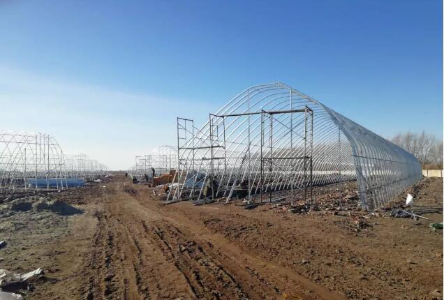 溫室大棚如何抗台風天氣去手,避免農主不受損失
