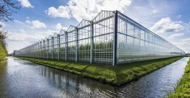 智能溫室大棚結構與造價分析