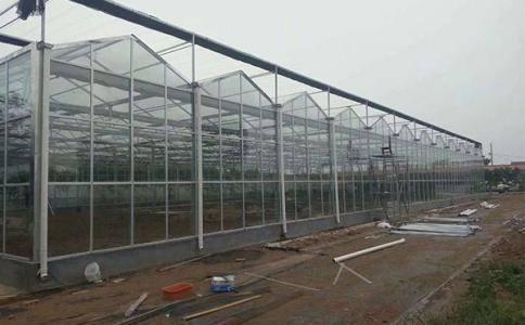 適合植物生長空間的溫室大棚脚一下,要這麼建造